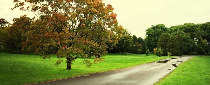 Regenachtig herfstweer