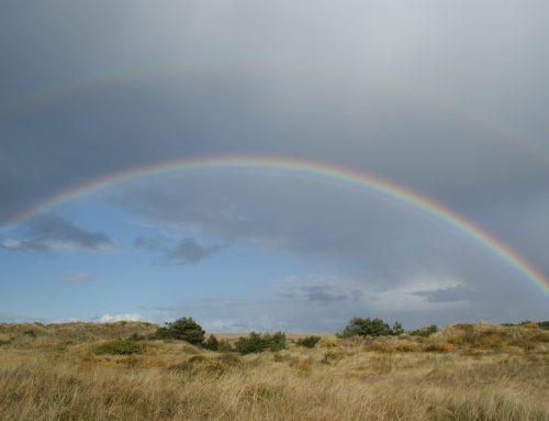 Herfst 2017: zeer nat en mild! Hoe verloopt de start van de meteorologische winter?